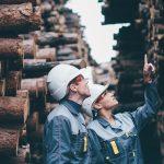 male and female log worker