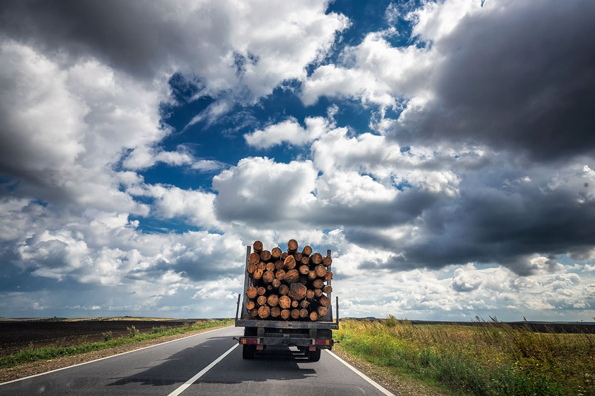 Truck transports timber